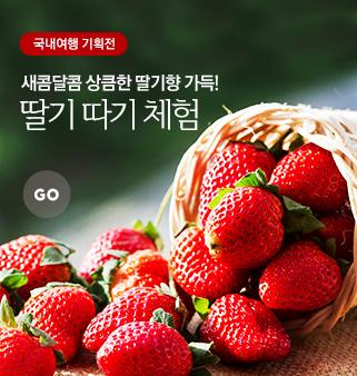 상콤달콤 딸기체험