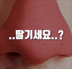 [국민코팩]미팩토리 3단 돼지코팩