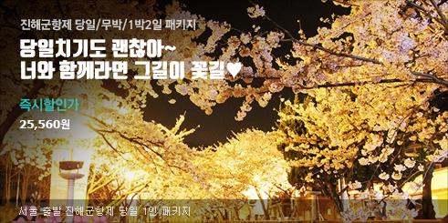 진해 군항제 벚꽃 총집합