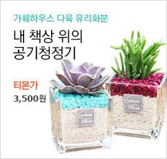 98무배★ 하트선인장/다육 유리화분